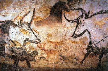 dictée cm1 la grotte de lascaux